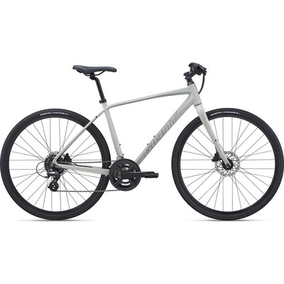 Giant Escape 2 Disc Bicycle 2021