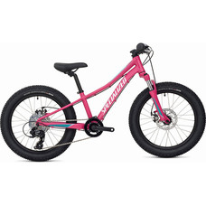 Specialized Riprock Mountain Bike 2021