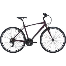 Giant Escape Comfort Bike 2021