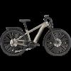 Cannondale 29 M Tesoro Neo X 1 E-Bike 2021