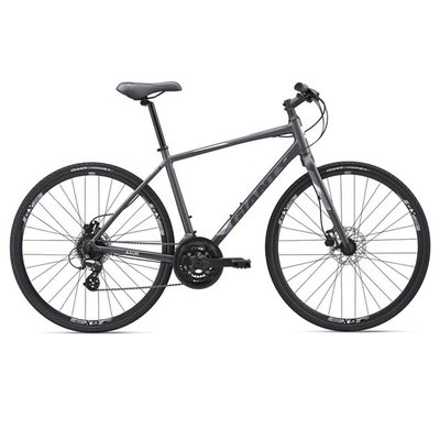 Giant Escape 2 Disc Bicycle 2019