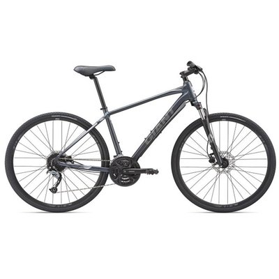 Giant Roam 2 Disc Bicycle 2019