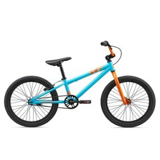 Giant GFR Coaster Brake Kids' Bicycle 2019