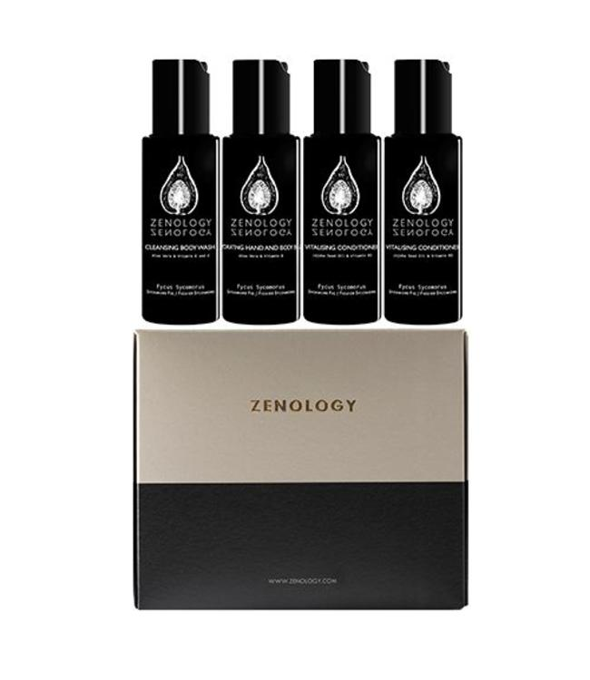 Zenology Fycus Sycomorus | Sycamore Fig  Jet Set Kit 4 x 50 ml