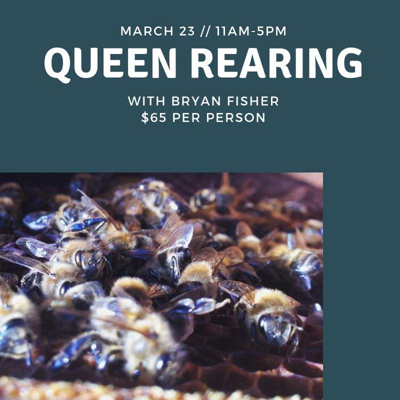 Queen Rearing Class