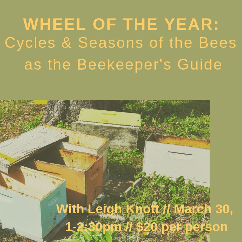 Wheel of the Year: Cycles & Seasons of the Bees