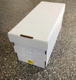 Medium Nuc in Cardboard Box 2019