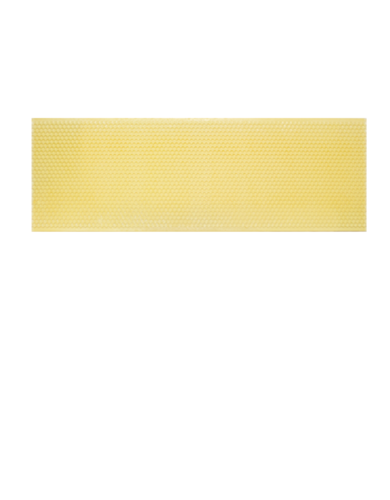 "5-5/8"" Medium Plastic Ritecell Foundation, Yellow (box of 100)"