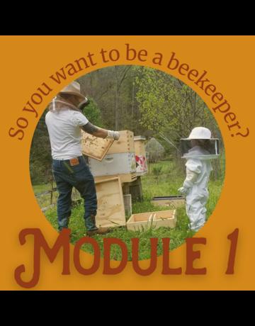 Beginner Series: Module 1