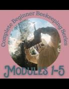 Honey & the Hive Beginner Series: ALL Modules (1-5)