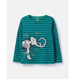 Joules Joules Raymond Glow in the Dark Shirt