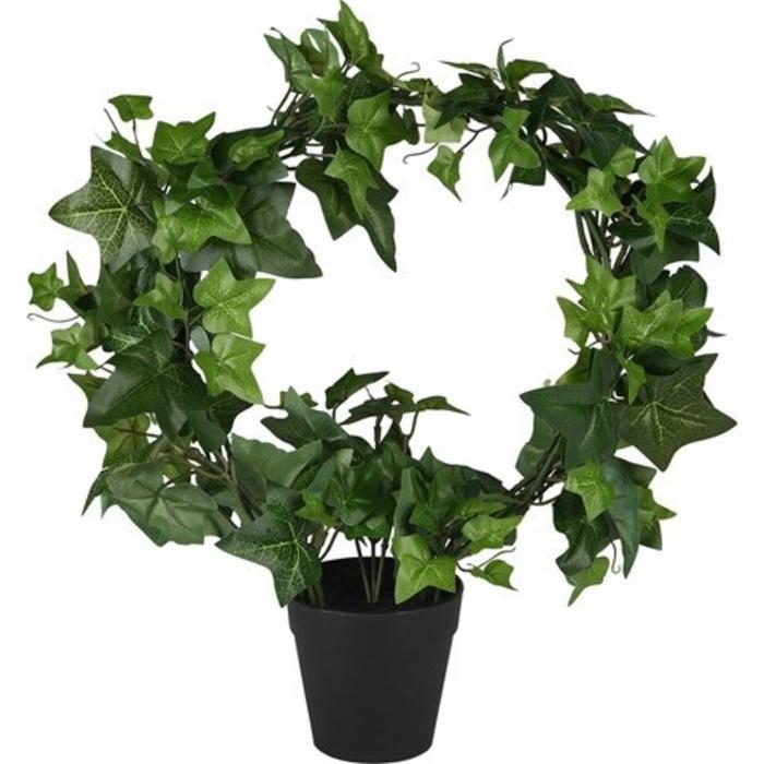 "Ivy Topiary 6"""