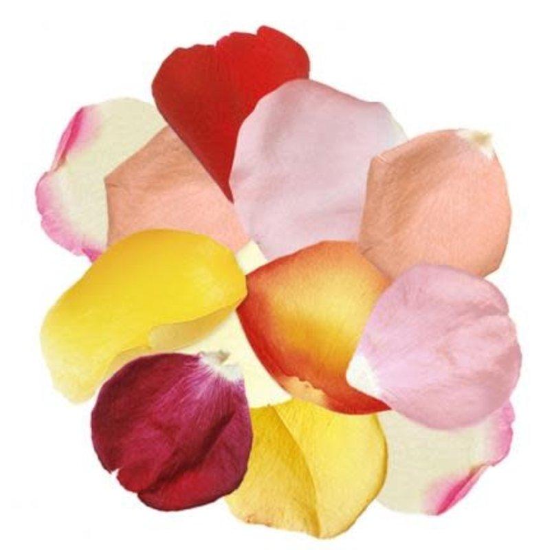 Box Mixed Rose Petals