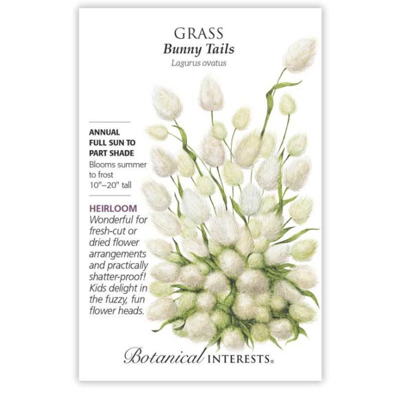 BI Seed, Grass Bunny Tails
