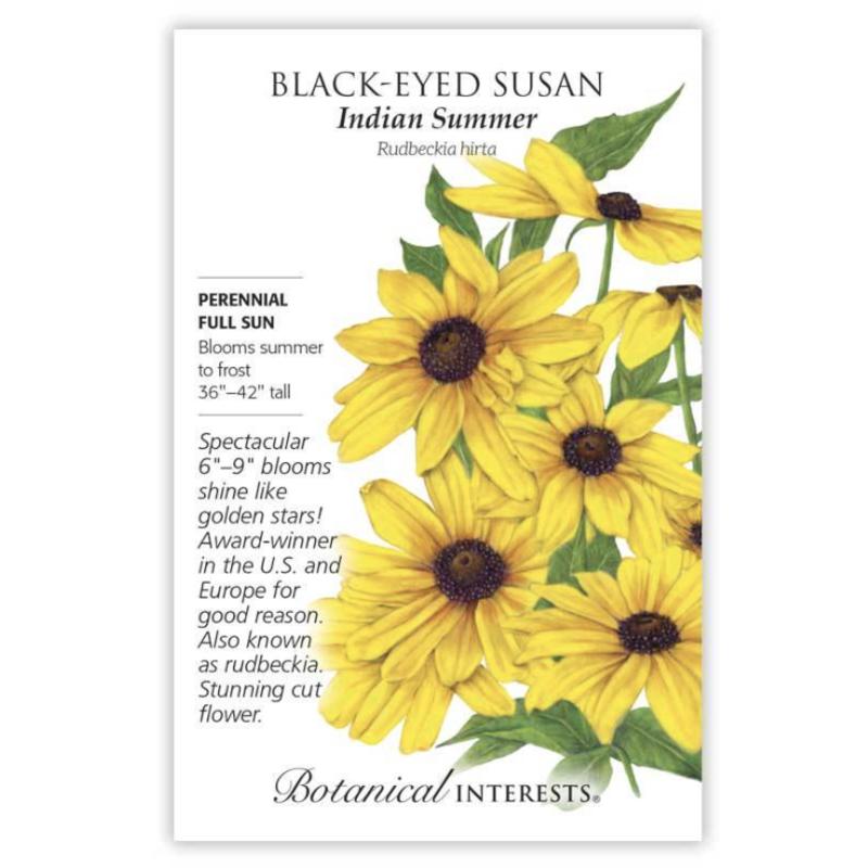 BI Seed, Black Eyed Susan Indian Summer