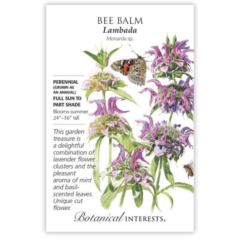 BI Seed, Bee Balm Lambada