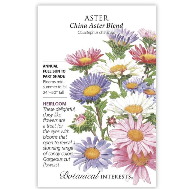 BI Seed, Aster China Blend