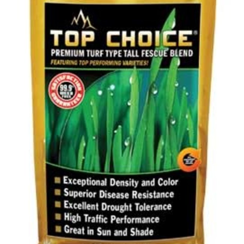 Top Choice Turf-Type Tall Fescue 25#