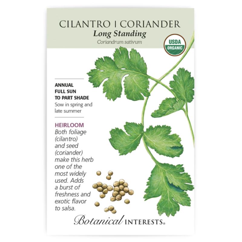 BI Seed, Cilantro Coriander Long Standing