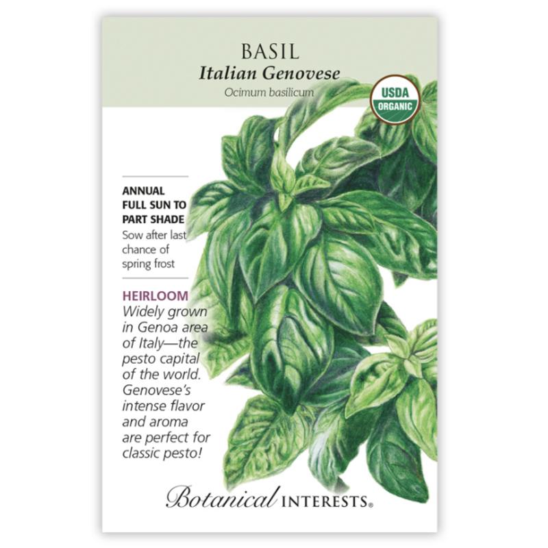 BI Seed, Basil Italian Genovese Org