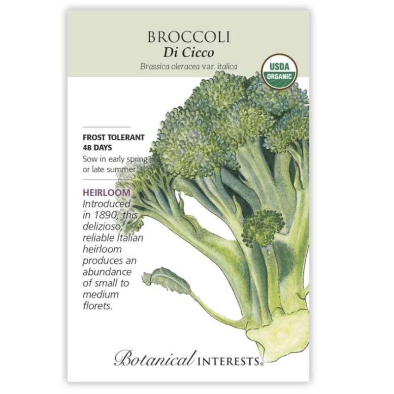 BI Seed, Broccoli Di Cicco