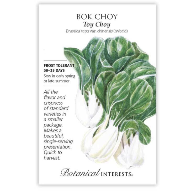 BI Seed, Bok Choy Toy Choy