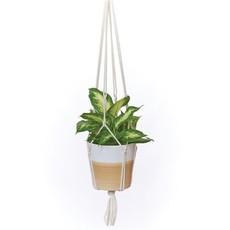 Macrame Plant Hanger Asst