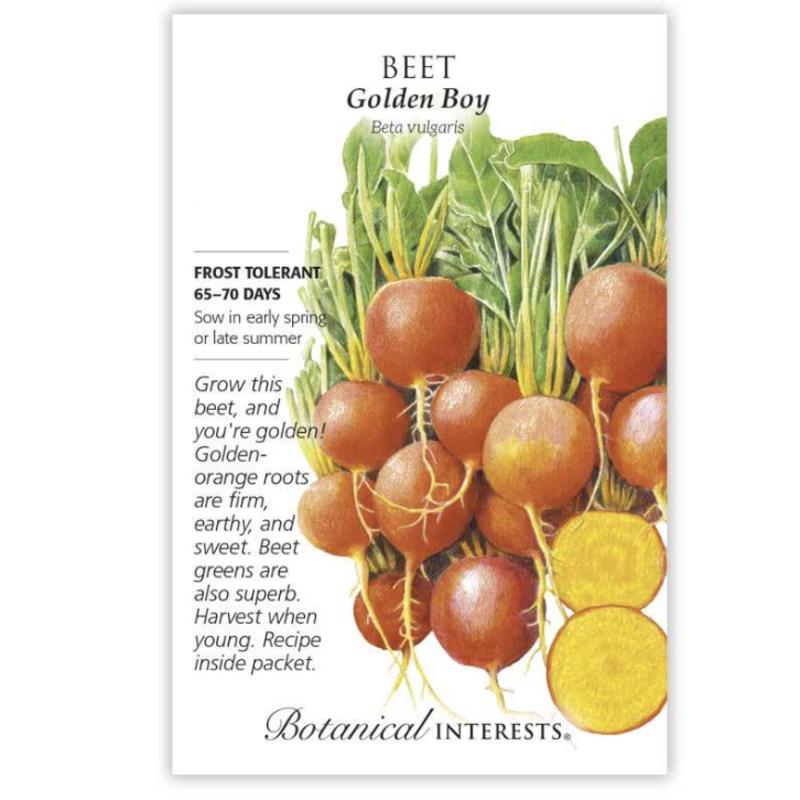 BI Seed, Beet Golden Boy