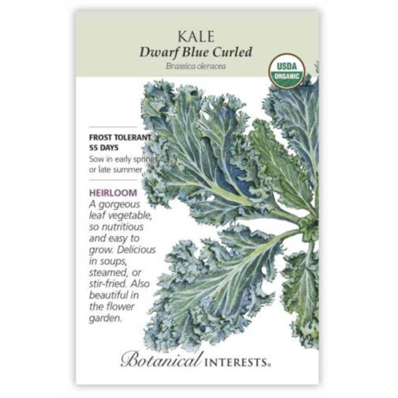 BI Seed, Kale Dwarf Blue Curled Org