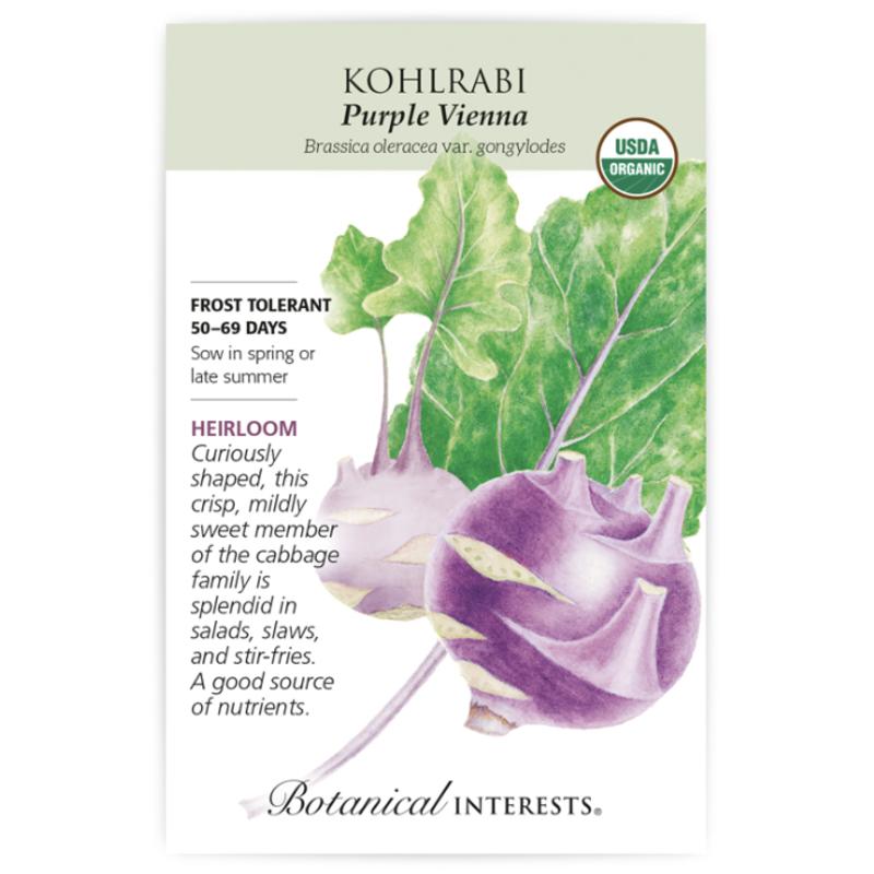 BI Seed, Kohlrabi Purple Vienna Org