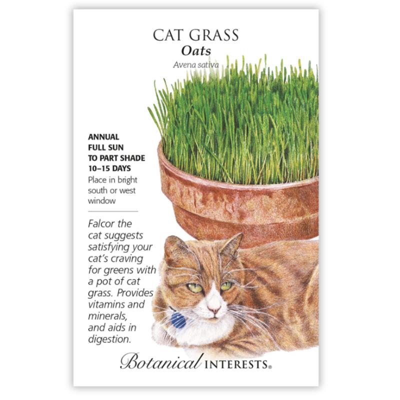 BI Seed, Cat Grass