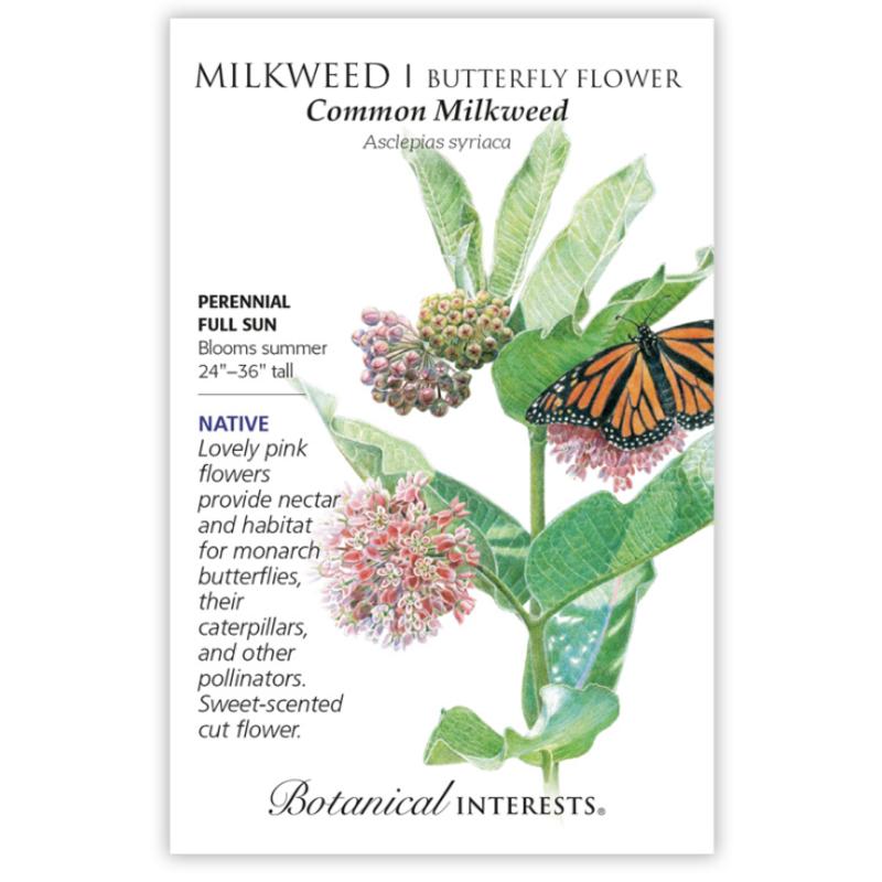 BI Seed, Milkweed Common Org