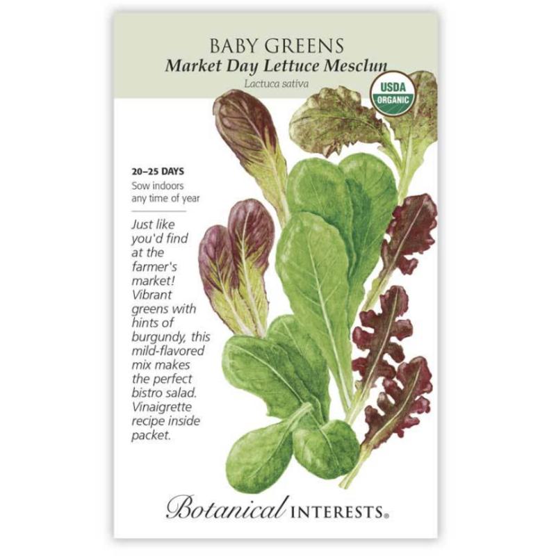 BI Seed, Baby Greens Lettuce Market Day Org