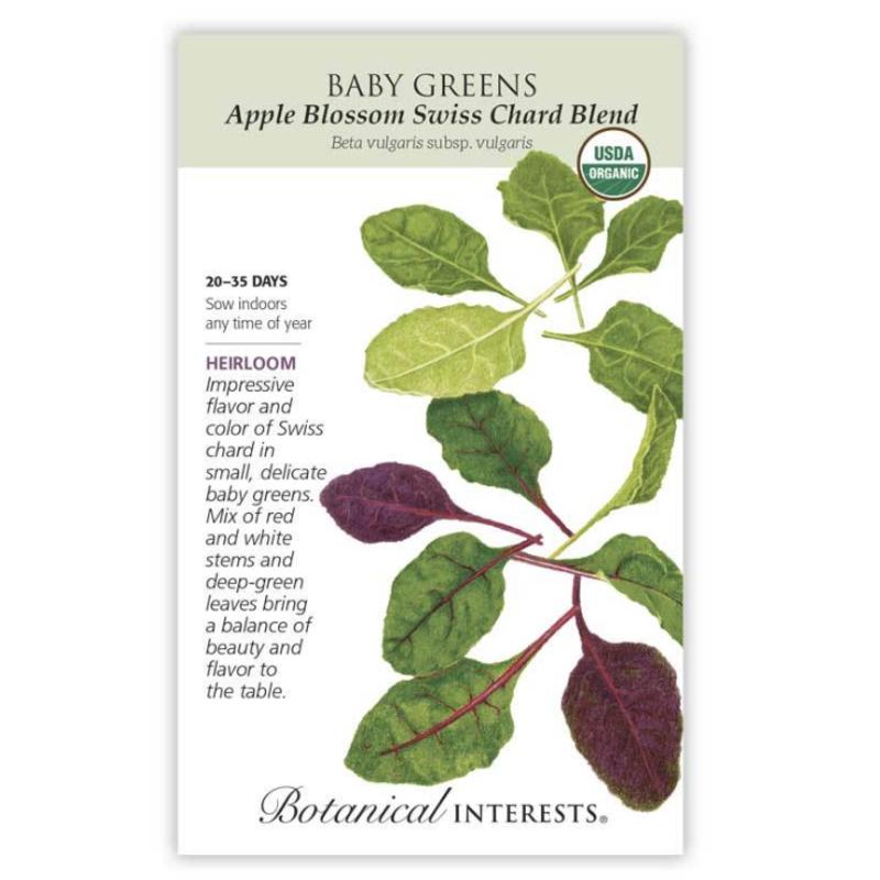 BI Seed, Baby Greens Swiss Chard Blend Org