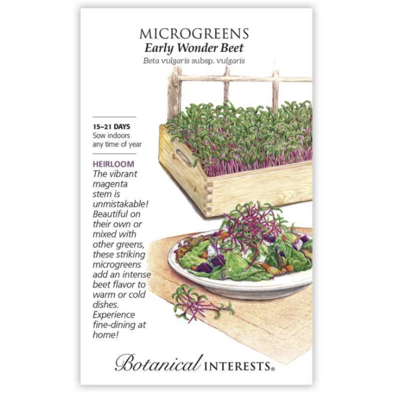 BI Seed, Microgreens Beet Early Wonder