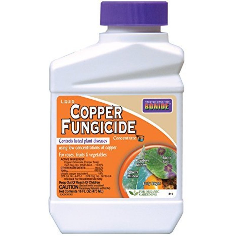Bonide Bonide Copper Fungicide 16 oz Concentrate
