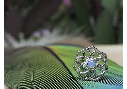 BVLA BVLA The Shandra 8.5mm 14g Threaded 14k White Gold with 2mm AAA White Opal center