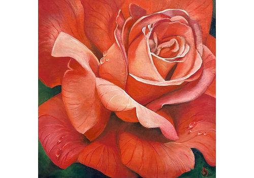 Rose canvas print - Beth Swilling