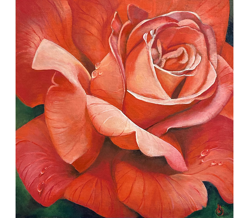 Rose painting canvas print by Beth Swilling