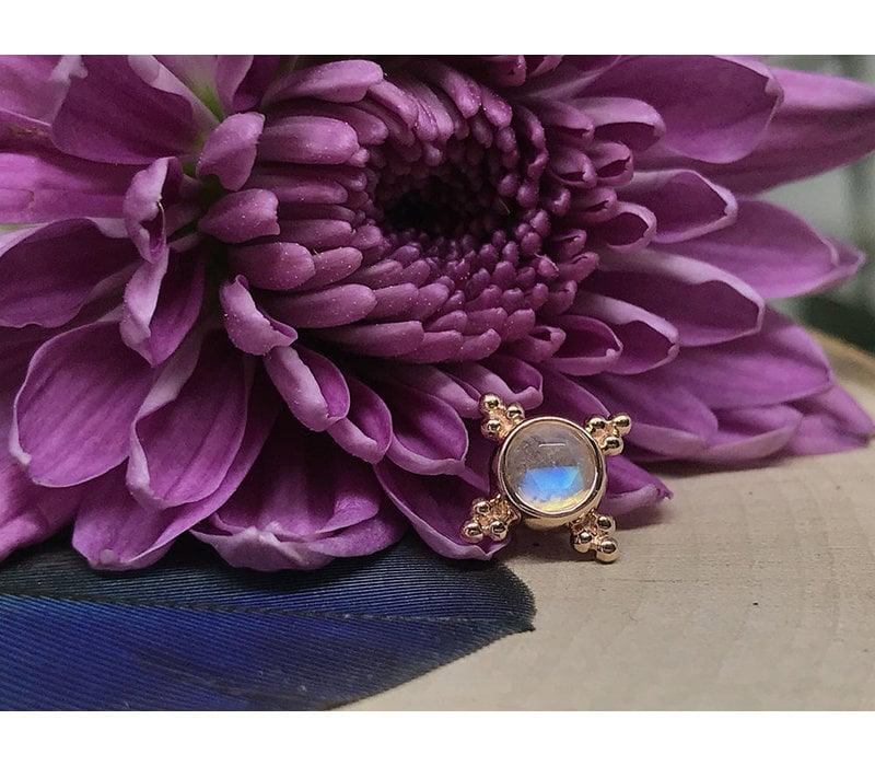 BVLA Mini Kandy 14k Rose Gold with 4mm Rose Cut Rainbow Moonstone Bezel 14g 8mm Threaded