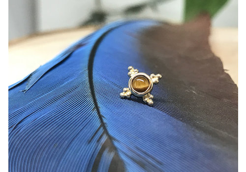 BVLA BVLA Mini Kandy 6mm 14k Yellow Gold with 3mm Tigers Eye Bezel Threadless