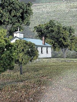 "Woodland Scenics WOOTR1570 Value Trees, Green Mix .75-2"" (38)"