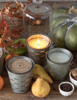Park Hill Collection Frost On Pumpkins Olive Bucket Candle
