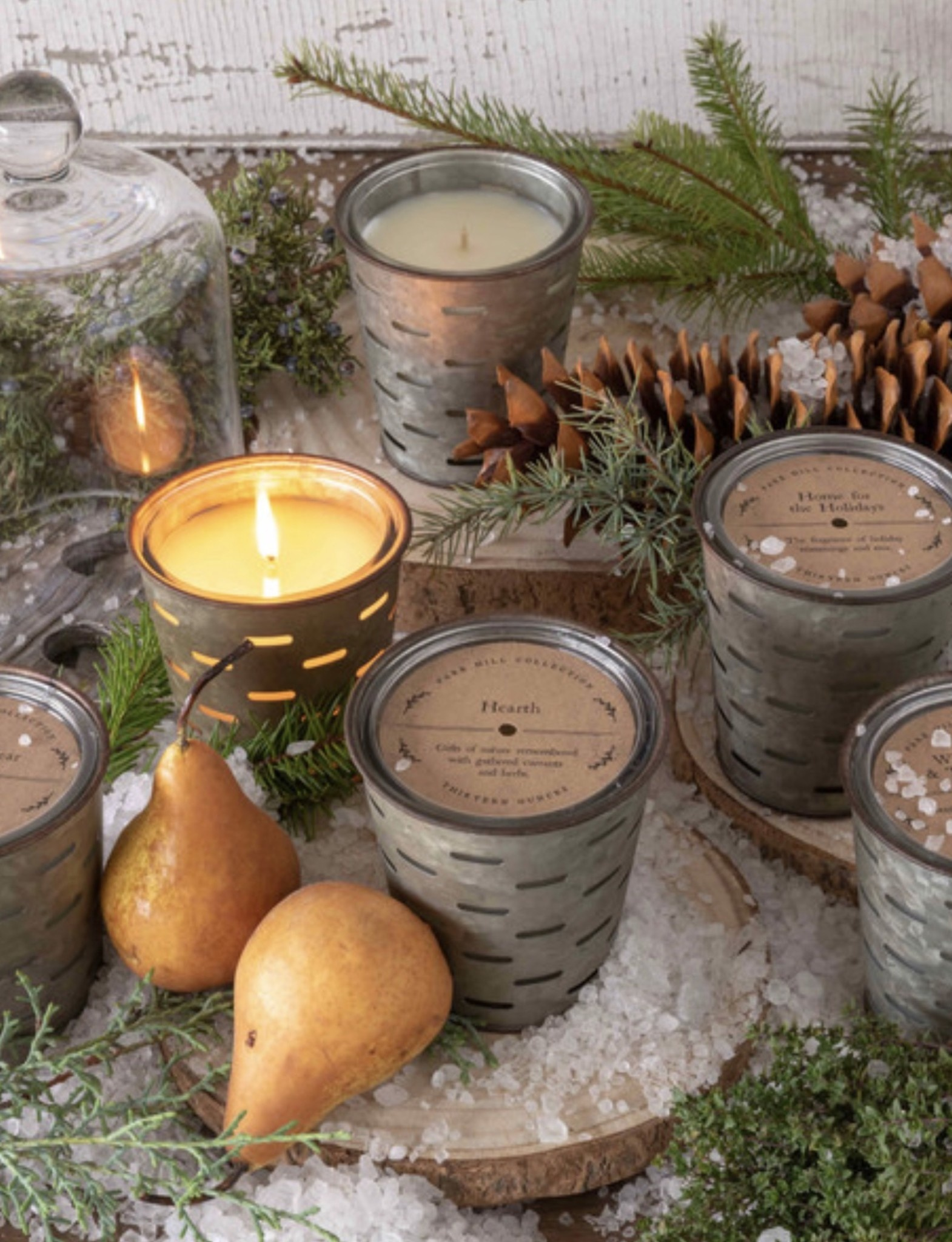 Park Hill Collection Noble Fir Olive Bucket Fragrance Candle