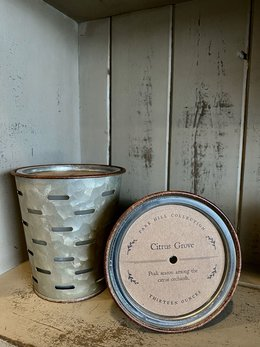 Park Hill Collection Citrus Grove Olive Bucket Candle