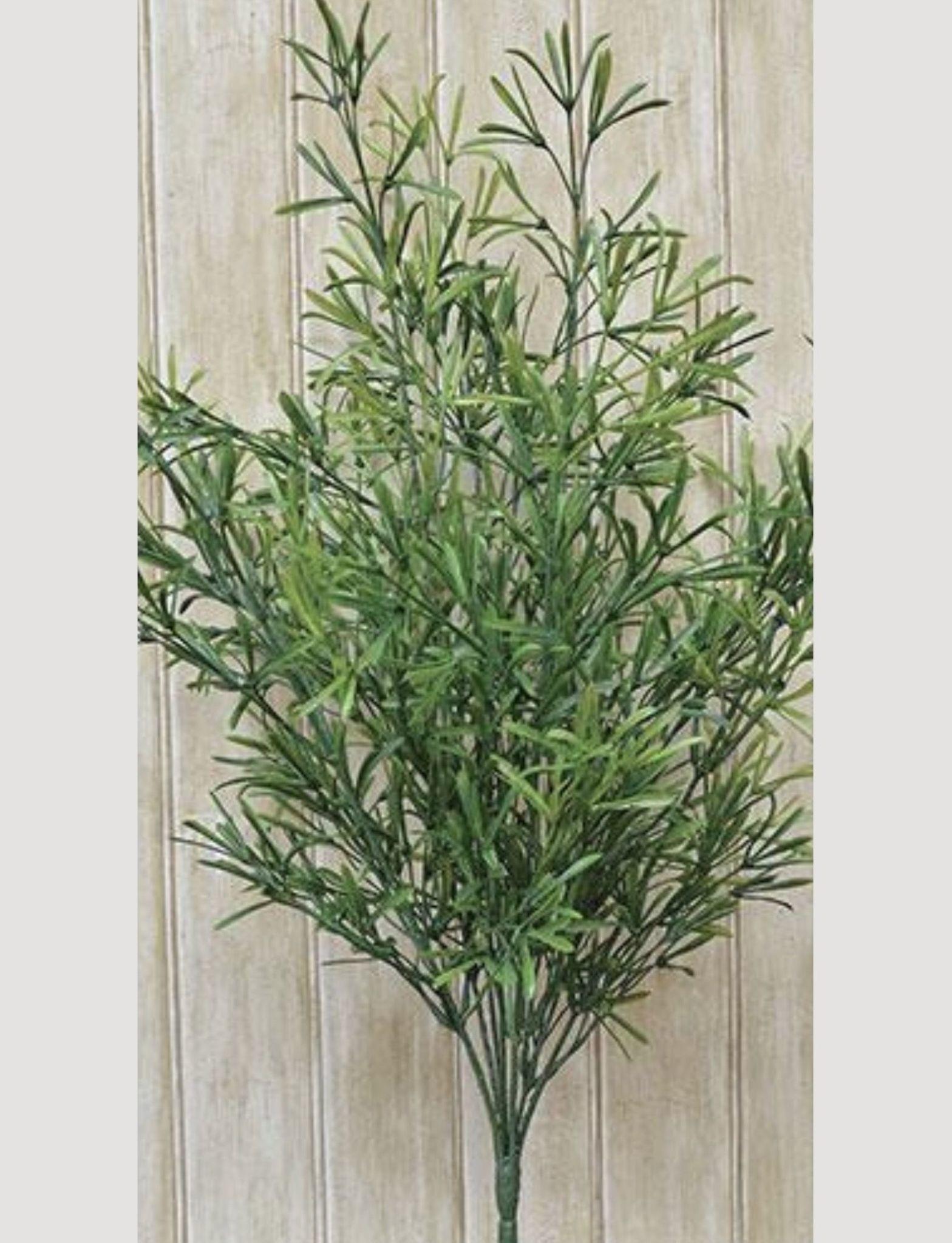 """Nana's Farmhouse Asparagus Bush - 14"""""""