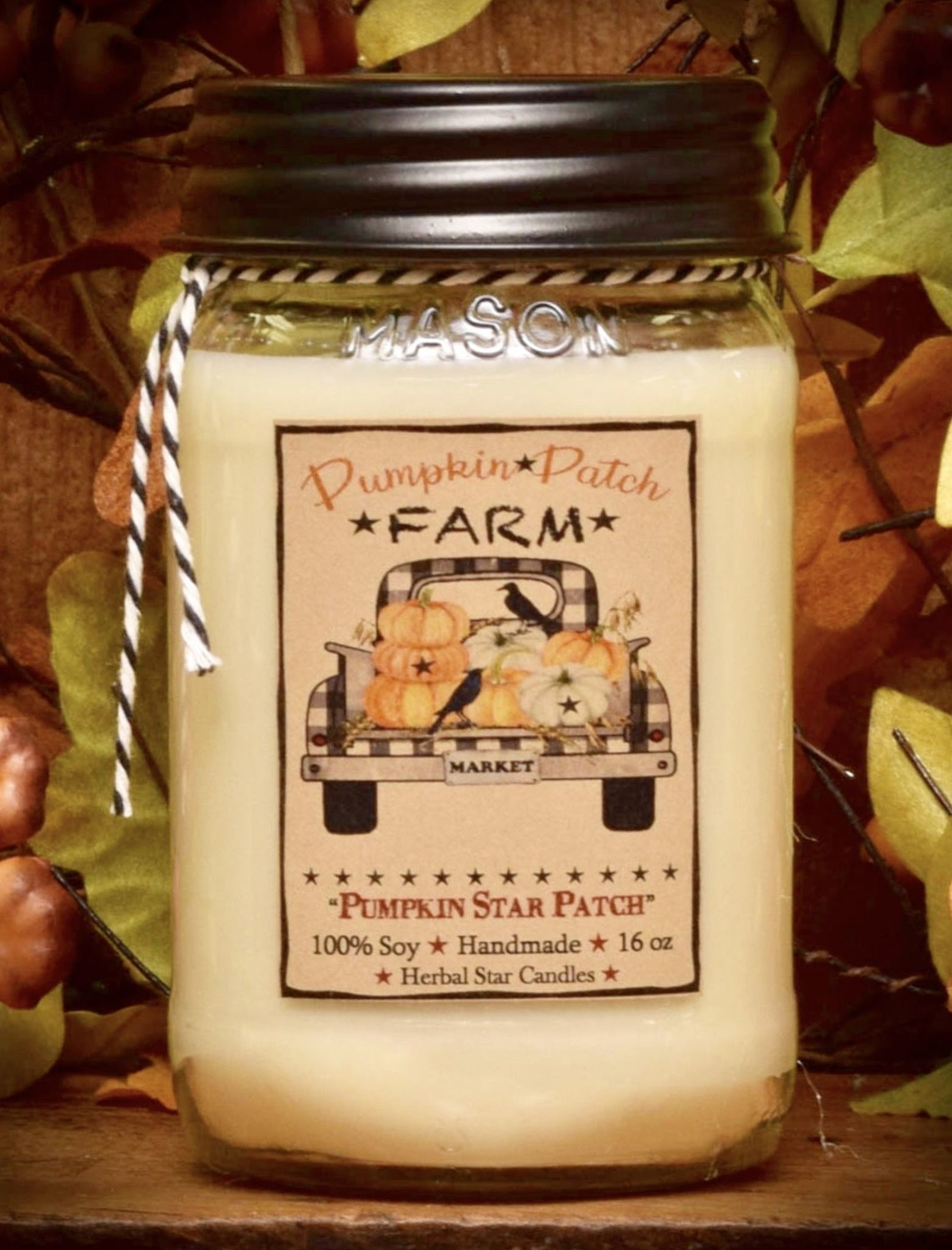 Herbal Star Candles Pumpkin Star Patch Soy Jar Candle - 16oz