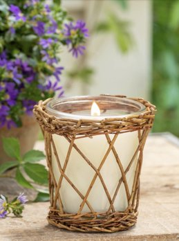 Park Hill Collection Back Porch Willow Candle