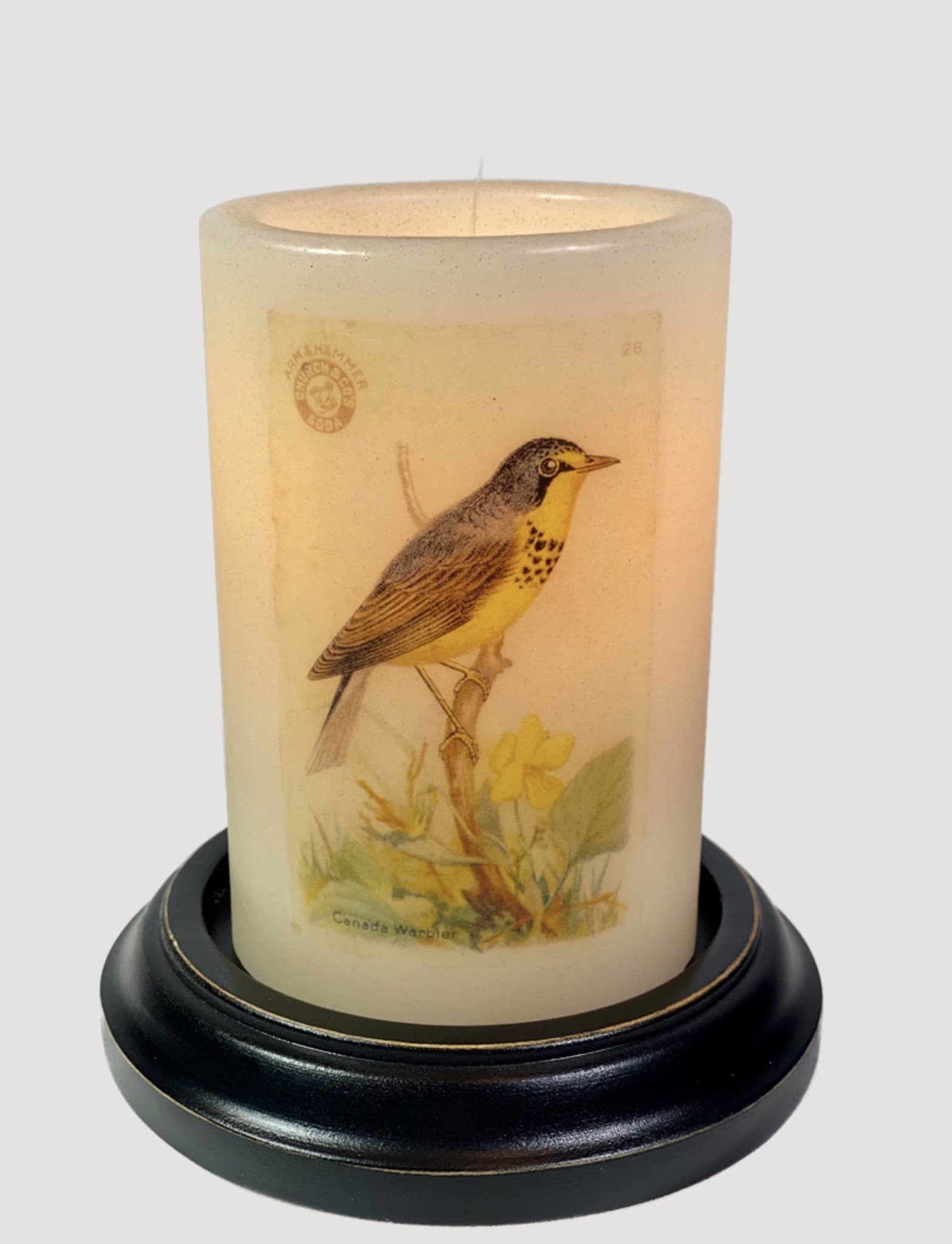 C R Designs Canadian Warbler Candle Sleeve