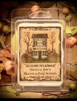 Herbal Star Candles Autumn Splendor Mini Pack of Tarts
